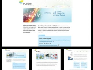 FROM THE ARCHIVE: Pureti Website